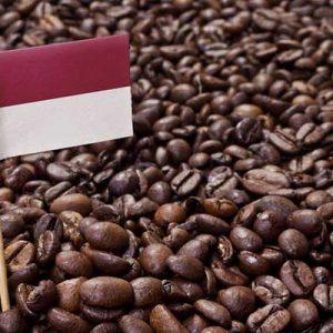 Kopi adalah jenis minuman seduh yang sudah dikenal sejak zaman dulu. Dulu, kopi biasanya menjadi minuman wajib bagi para orang tua kita, kini kopi juga sudah menjadi minuman favorit kaum muda. Saat ini, banyak kita temui kafe–kafe yang menjadi tempatnongkrongkaum muda, dengan menu andalancoffee.